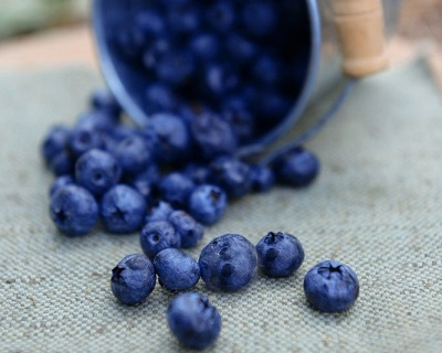 10 Foods That Have High Antioxidant Levels
