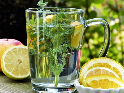 Immune System Booster Tips to Support Your Healthy Life