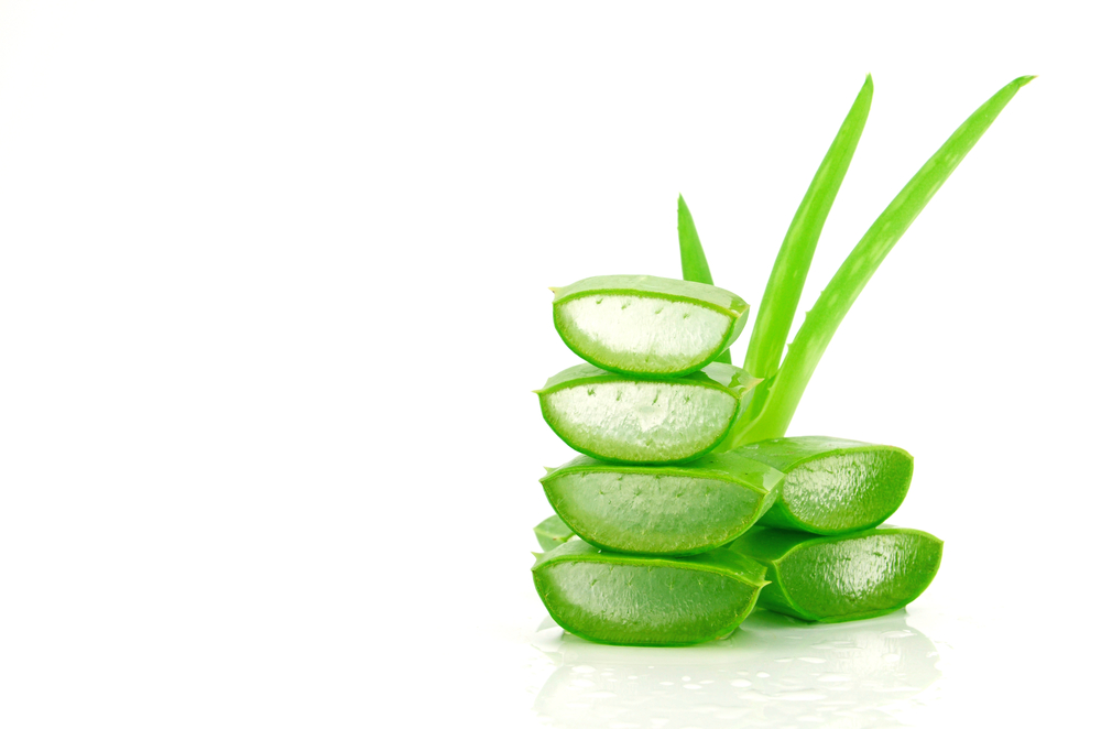 Aloe Vera for Weight Loss: A Miracle or Mistake?