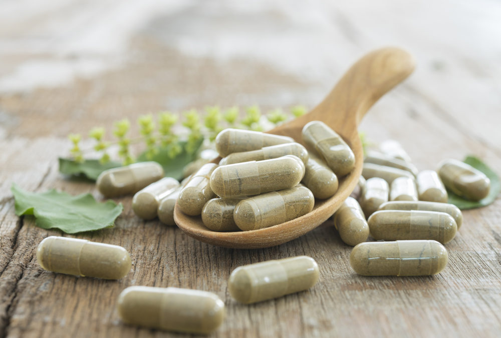 Moringa Information: What You Should Know About this Antioxidant Plant